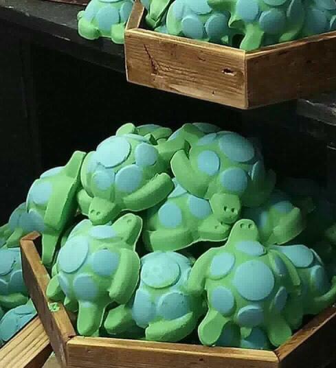 lush_turtle